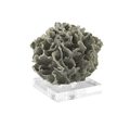 COASTAL GREEN LACE CORAL SCULPTURE