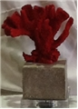 RED CORAL STATUE WITH CEMENT BASE